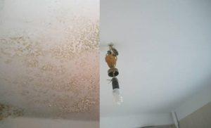 Покраска и побелка потолка